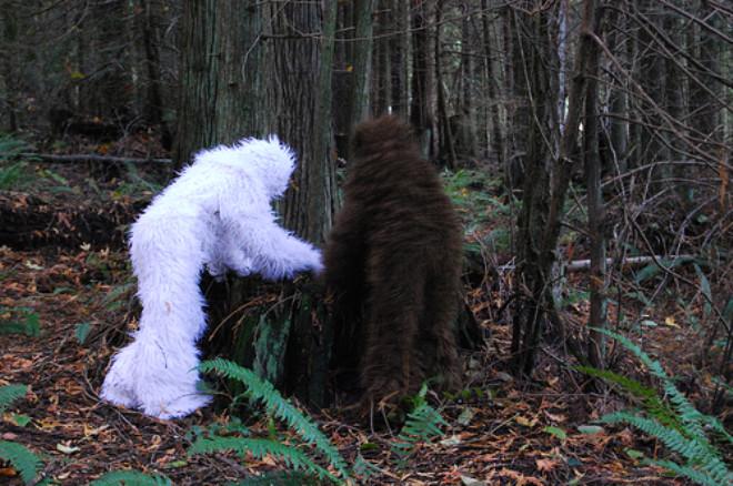Sasquatch olarak adlandırılan canlının saç, deri ve diğer doku örnekleri analiz edildi. Çalışmaya ABD