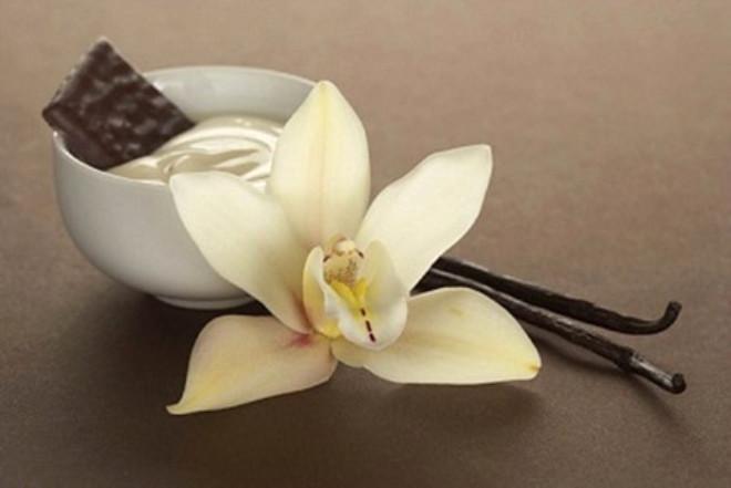 Kokusu ve tadıyla ünlü vanilyanın aslında her derde deva bir bitki olduğunu biliyor muydunuz? İşte vücuda faydaları...