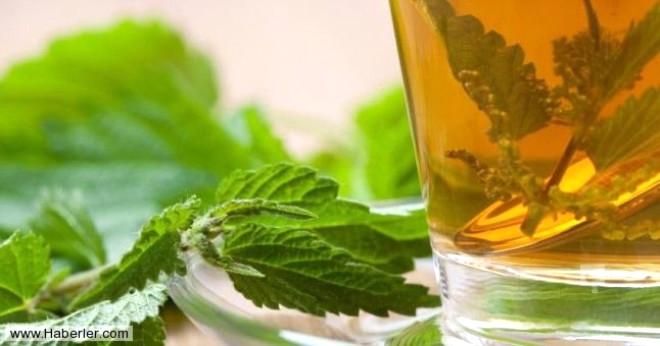 Kanda birikmiş toksinlerin atılmasında fayda sağlıyor, hazımsızlık sorunu yaşayan kişilerin günlük bir fincan ısırgan çayı içmeleri tavsiye ediliyor.