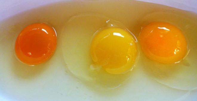 Sağlıklı yumurtayı ayırt etmek biz şehir insanları için çok kolay bir durum değil ne yazık ki. Sağlıklı yumurtanın doğada organik olarak beslenen, serbest gezen tavuklardan alınacağını biliyoruz ancak piyasadaki hileler yüzünden bu bilgide yeterli olmuyor.