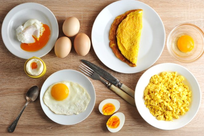 Saner, yumurta yerine yumurta kırdıktan sonra ellerin yıkanmasının, tavuğun dışkısından kaynaklanan hastalıkları önleyeceği görüşünde...