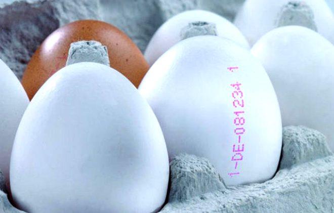 Eğer aldığınız yumurtanın üzerindeki kodun ilk rakamı 1 ise gezen tavuk yumurtasıdır. Kümeslerde değil, tavuk çiftliklerinde yetişen ve özgür gezen tavukların yumurtalarıdır. Organik yumurtadan sonra en sağlıklı yumurta budur diyebiliriz.