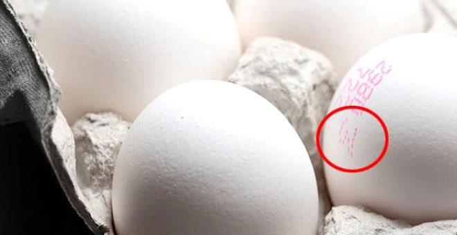 Yumurta hepimizin evlerindeki en temel gıda maddelerinden biri. En sağlıklı proteinlerin başında gelmesinin yanı sıra çok da doyurucu. Özellikle organik beslenmek isteyenlerin işine yarayacak olan bilgileri derledik.